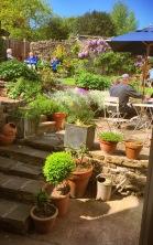 garden-paul