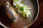 Mackerel food TRP low res