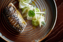 Mackerel food TRP low res